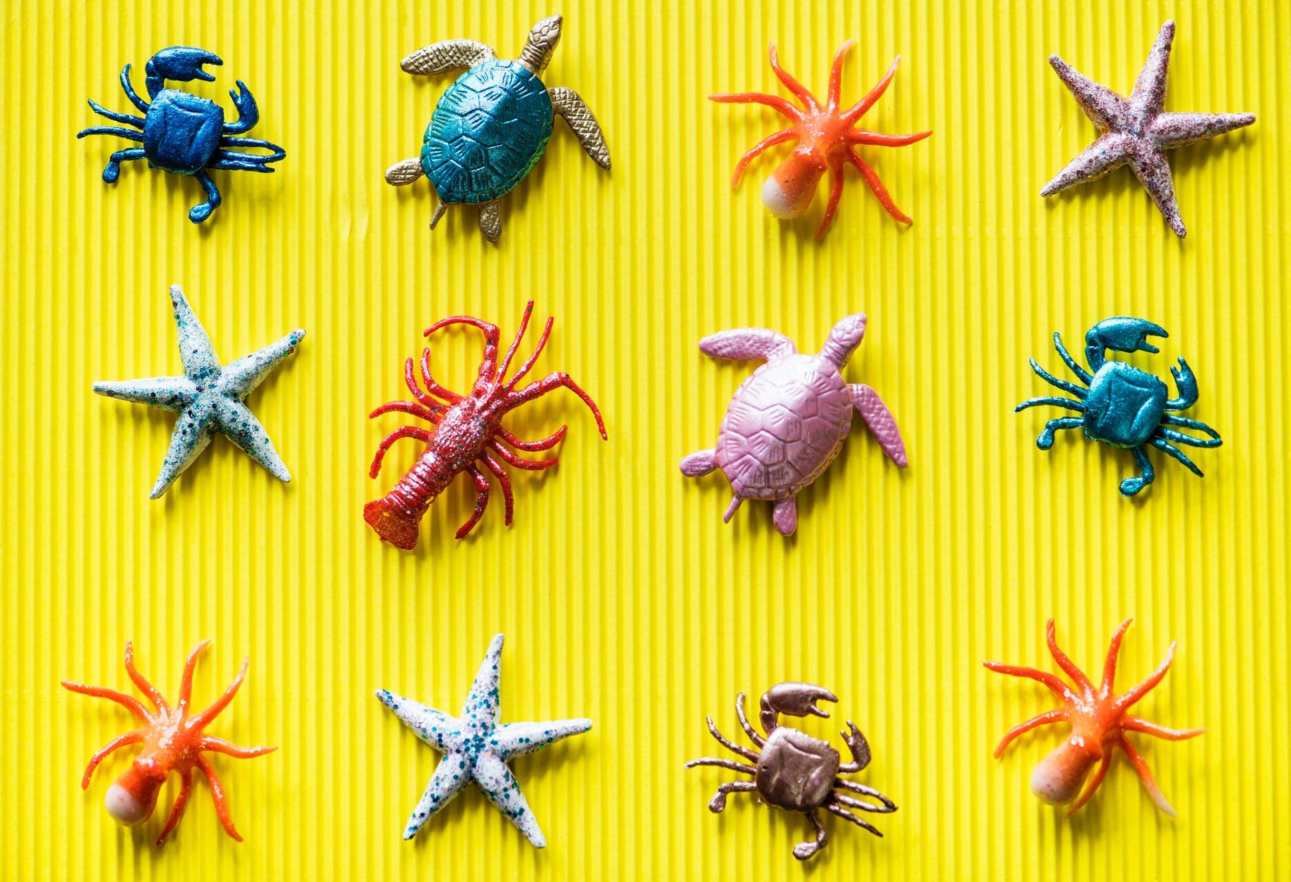 assorted underwater animal toys