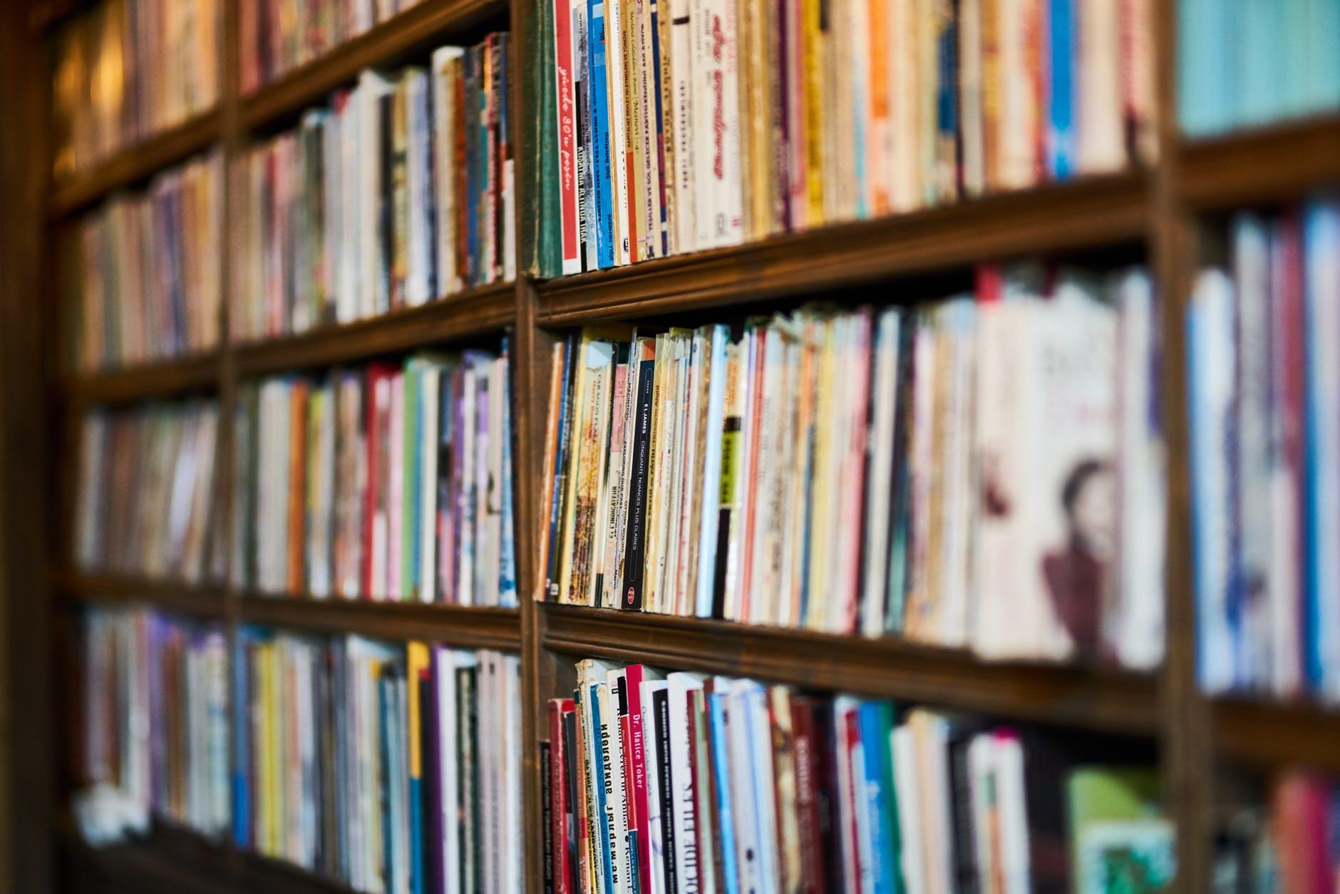 assorted books on wooden shelf